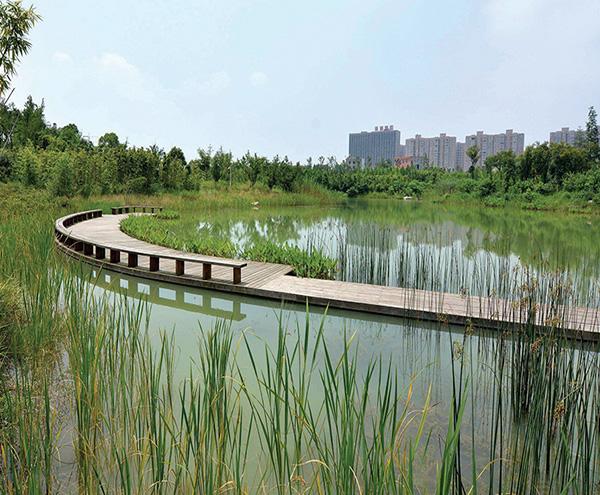 昆明水环境综合治理和修复